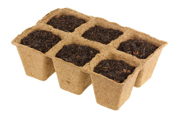 Eco Friendly and Biodegradable Plant Pots