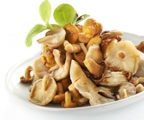 tasty mix of mushrooms