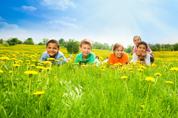 Five kids in the dandelion field