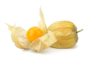 Physalis fruit isolated on white background
