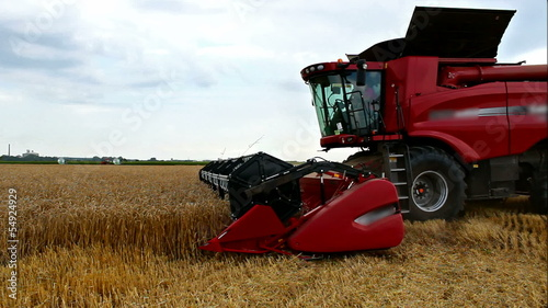 Harvester wheat