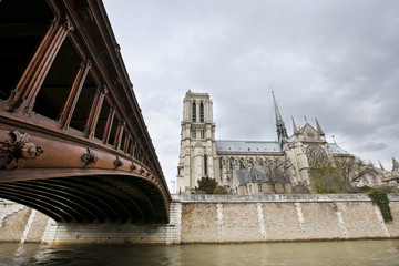 Side View of Notre Dame and Seine River