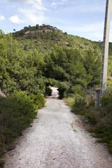 Rural road near Puçol Valencia