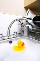 Rubber duck in kitchen sink