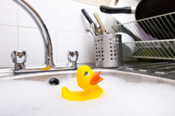 Rubber duck in kitchen sink