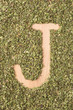 Letter J written with oregano