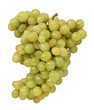 Uva bianca - White grape