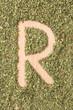 Letter R written with oregano