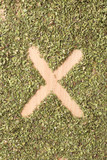 Letter X written with oregano