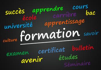 Formation (école, culture; tableau)