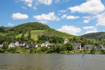 Houses and vineyards along river Moselle in Germany