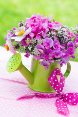 Rosa Gartenblumen