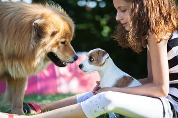 Mädchen spielt mit zwei Hunden