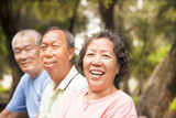 happy asian seniors in the park
