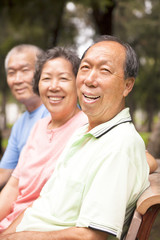 relaxed asian seniors in the park