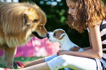 junges Mädchen mit zwei Hunden