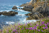 beautiful rocky coastline and sea - Brittany, France