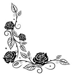 Ranke, Rosen, Rosenranke, Blumen, Blüten, schwarz