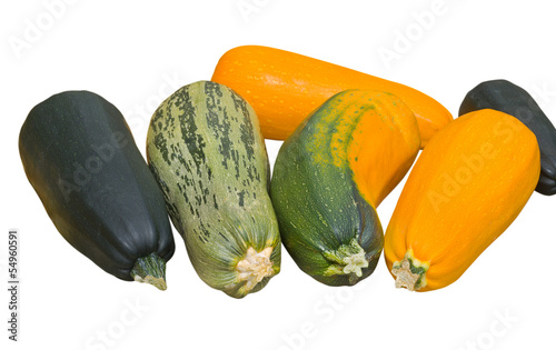 Vegetable marrows 3