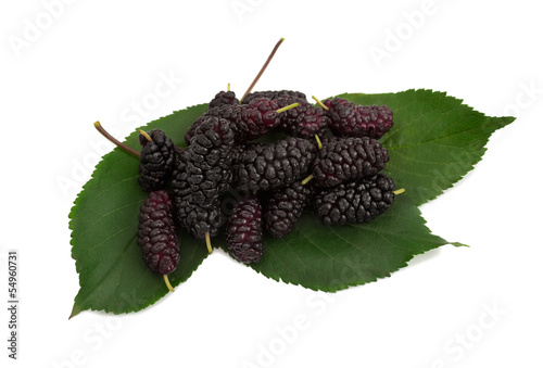 mulberries with leaves on the white background