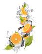 Ice oranges on white background