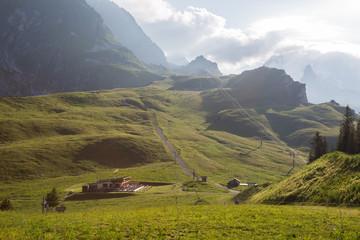Plateau du Bochor - alpage et glaciers le matin