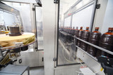 Brown bottles with  beer go on conveyor at  brewery.