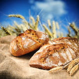 Fototapety Freshly baked traditional bread with wheat field on background