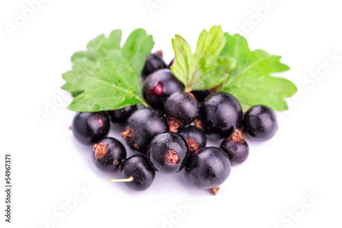 Fresh ripe blackcurrants isolated