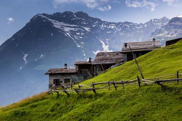 baite alpine