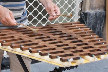 Instrumento musical melódico de percusión