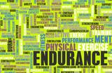 Endurance poster