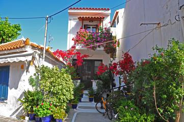 griechische häuser mit blumen auf samos