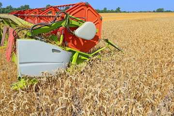 Maize grain harvester