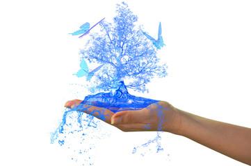 water's tree