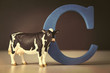 The letter C with a toy cow on table