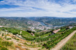 Panoramic view over River Douro