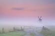 Dutch windmill in dense fog at sunrise