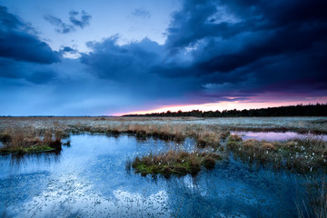 thunderstorm over swamps