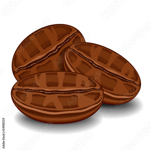 Three isolated coffee beans on white background. Vector