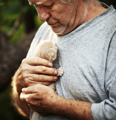 Portrait of a  elderly man holding little kitten