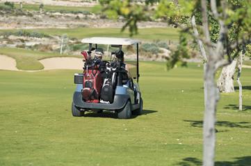 Zypern, Mann und Frau sitzen im Golfwagen