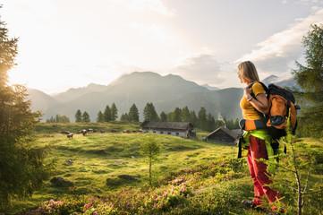 Österreich, Salzburger Land, Junge Frau, Bergwiese, beobachtet Landschaft