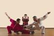 Kung Fu, Changquan, Pubu cuanzhang, Mabu shuang tuizhang, asiatische Kampfkünste