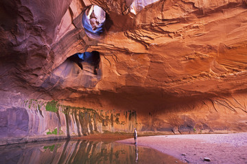 USA, Utah, Grand Staircase-Escalante National Monument, Neon Canyon, Tourist in Golden Cathedral