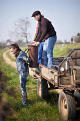 Kroatien, Baranja, Männer und Frau arbeiten im Weinberg