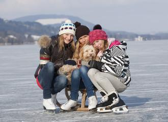 Österreich, Teenage Mädchen auf Schlitten mit Hund