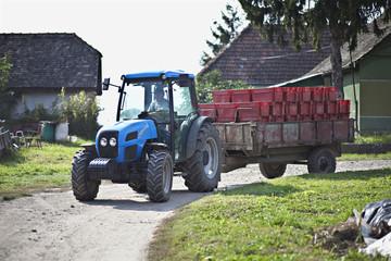 Kroatien, Baranja, Junger Mann bringt Containern in Traktor