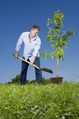 Junger Mann einen kleinen Baum pflanzen