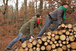 Deutschland, Berlin, Wandlitz, Freunde Klettern auf Baumstapel